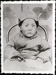 dalai-nino-monstruito